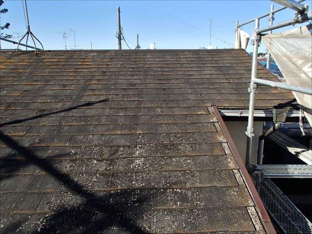 築30年超の屋根。塗膜は完全に剥がれ、コケが全体を覆っています。