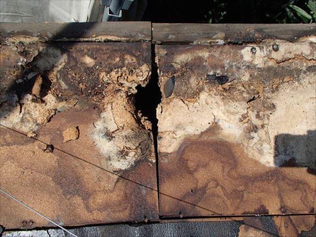 亀裂が生じていた屋根を剥がすと下地は腐朽が進み穴が開いていました。