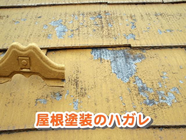 屋根塗料のハガレ