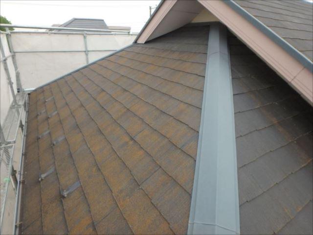 屋根にはコケがびっしり生えています。
