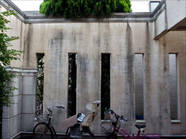 玄関前の壁はコケと汚れでたいへんな有様です。