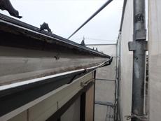 横樋は外側に開いてしまい補修は不可能です。雨樋は全交換します。