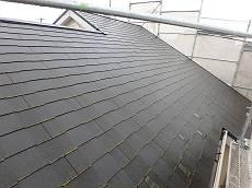 屋根は経年並みのこけが目立ちます。