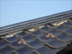 瓦屋根の漆喰は劣化が激しい状態です