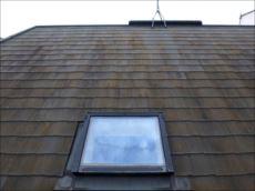 屋根にはコケがびっしりと生えていました