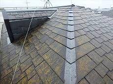 屋根全体がコケに覆われすごい状態です。