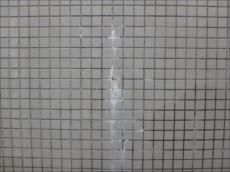 門塀に浮き出たエフロレッセンス。白く硬い液状のものが流れ出しこびりついています。