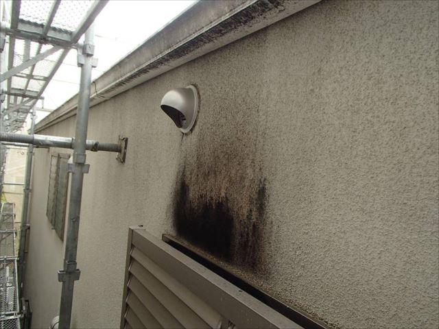 浴室の換気扇フードでしょうか。付近の外壁にはカビが付着していました。