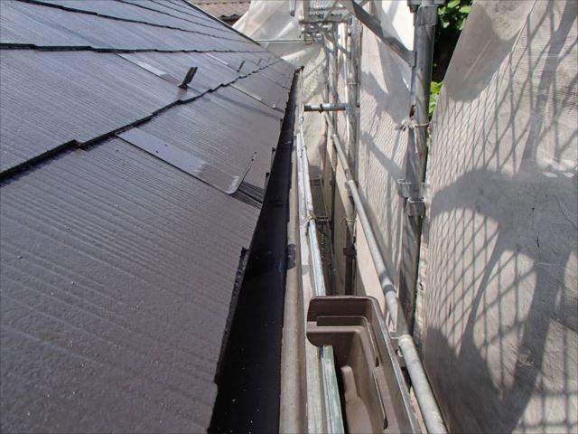 プランターと化していた軒樋もキレイに掃除しました。