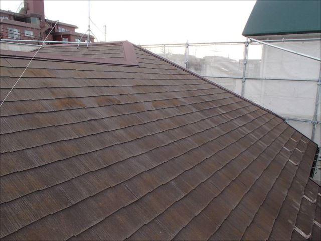 屋根はコケが覆い茂りとても滑りやすくなっています。