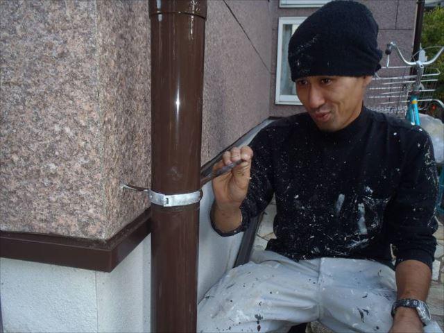 雨樋は焦げ茶で塗装しました。