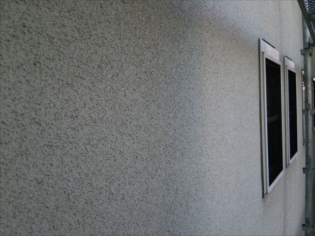 リシン吹き付け外壁はコケが付きやすいんです。