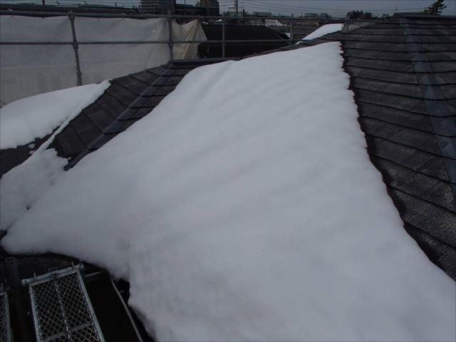 1回目の大雪です。この時点ではまさか2回目があるとは思いもしませんでした。