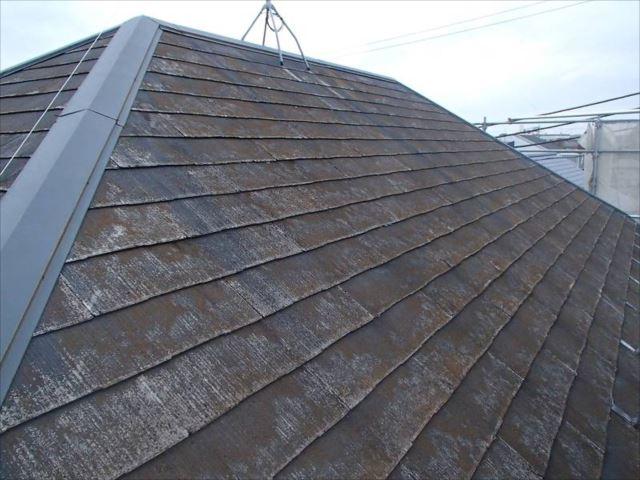 施工後の屋根です。30年分の汚れとコケがびっしり付いています。
