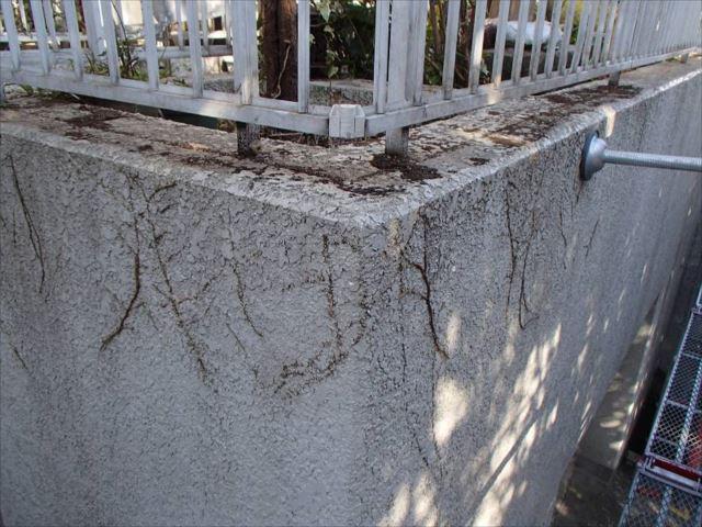 ツタがはびこり塗膜は剥離、大きなヒビ割れも見られる擁壁。苦労しそうです。