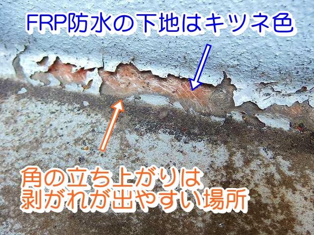 防水層劣化
