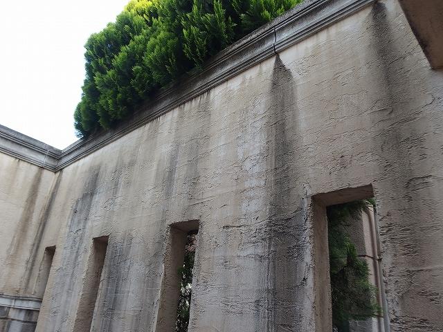 玄関擁壁内が異常に汚れてしまっているモノプラル外壁
