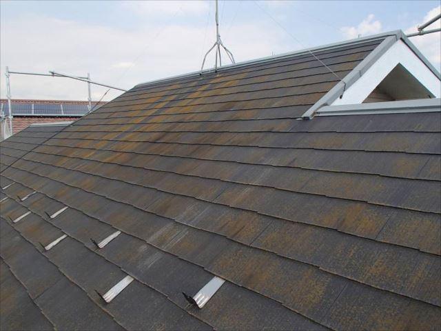 施工前の屋根です。コケがびっしりでした。