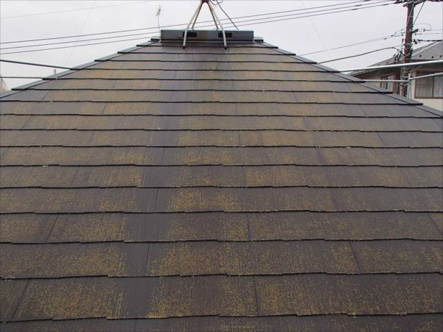 施工前の屋根です。大量のコケに覆われていました。