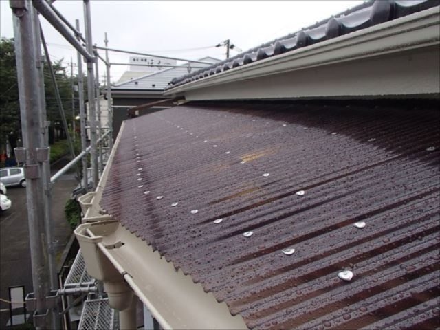 廊下の屋根は強度と耐久性に優れたポリカーボネート製の波板に交換しました。