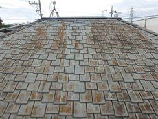 屋根は全体がコケに覆われています。