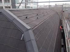 屋根はかまぼこ型。珍しい形状です。