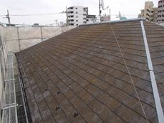 しかし屋根はコケ、汚れなどで大変なことになっていました。