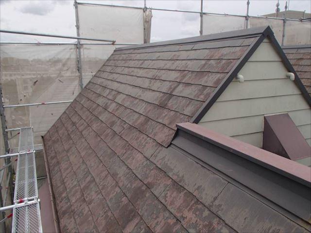 施工前の屋根です。塗膜が完全に剥離し、全面をコケが覆っています。