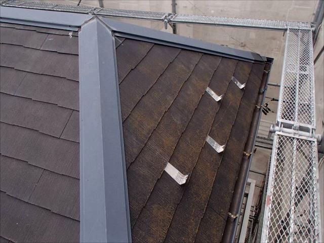 施工前の屋根です。コケがびっしりと生えています。