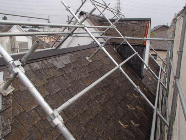 施工前の屋根です。25年分の汚れとコケがびっしり付いていました。