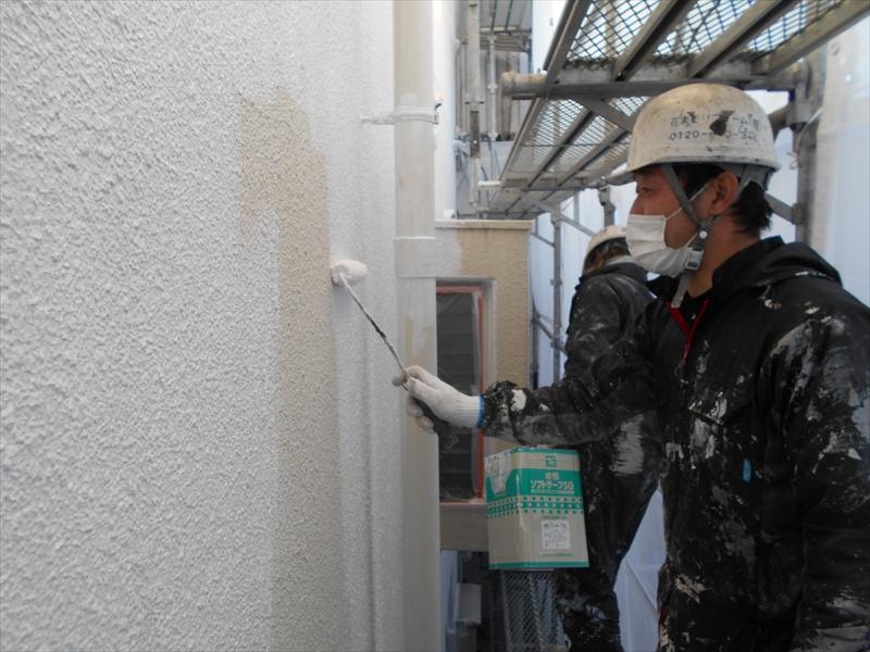 外壁の下塗りを丁寧に行っています。