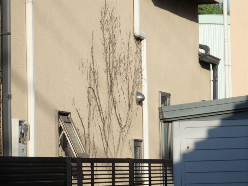 外壁の汚れ・劣化