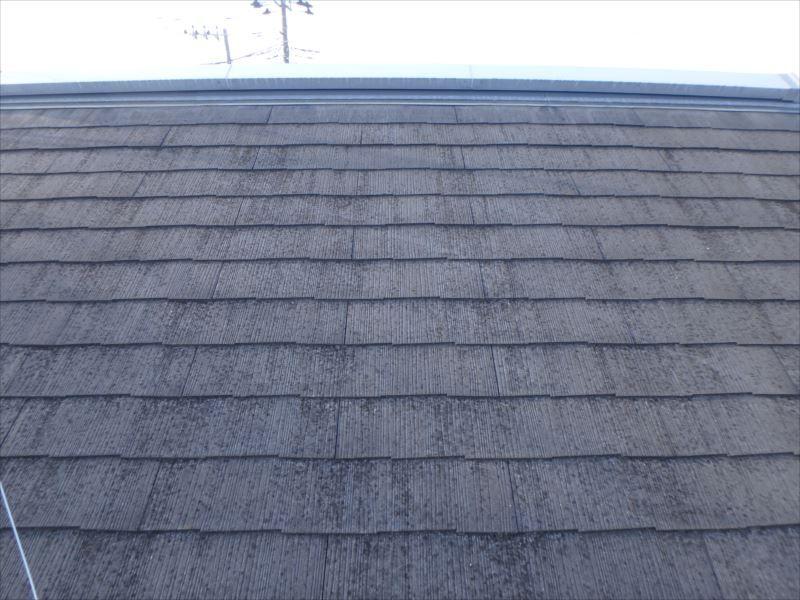 屋根には退色、コケが確認できます。