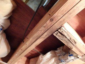 散水調査 屋根裏 雨漏りを確認。