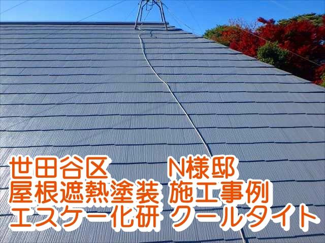 屋根塗装N様邸
