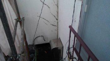 外壁 ツタ除去後