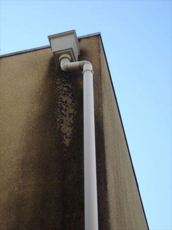 集水器に入る水が漏れたり溢れたりして外壁に湿気をため、コケが生えています。