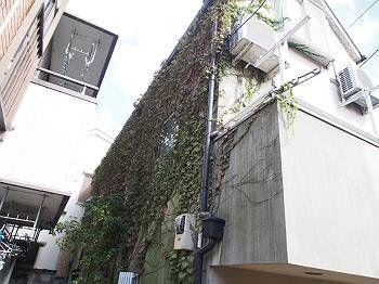 世田谷区Y様邸 塗装工事前(ビフォー)