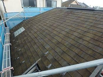 施工前の屋根です。コケが生い茂っています。