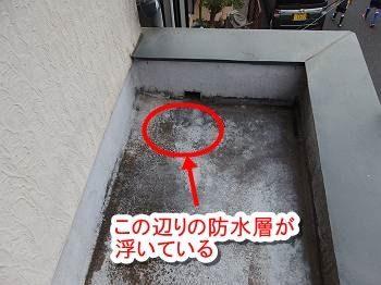 玄関上の防水層をよく調べてみると、排水口の近くの防水面が下地から浮いているのを発見しました。