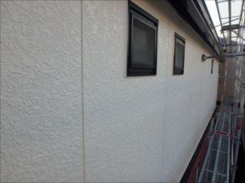 ツタに覆われてジャングル化していた外壁北面。 艶有り塗料のおかげでツタもこびりつきにくくなっています。