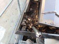 雨樋の掃除作業も行いました。