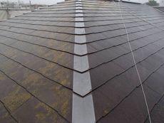 屋根はコケが付いていますが特に問題箇所はありません。