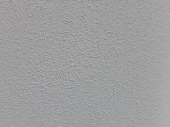 外壁もきっちり塗装し、巣穴も残さず塗り終えることが出来ました。