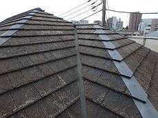 屋根はコケが覆い、クラックも散見されます。