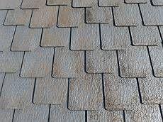 屋根はうろこ形状の高級なスレート瓦。勾配は緩く地上からは目立ちませんが、コケが広がっています。