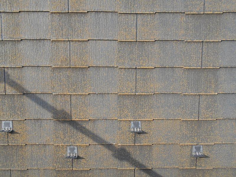 洗浄前の屋根。全体的に汚れで色がくすんで見えます。