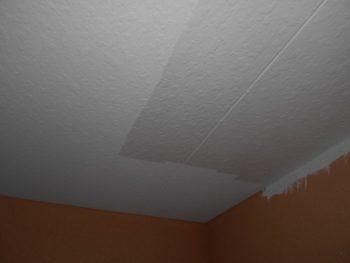 軒天もきれいに塗装していきます。