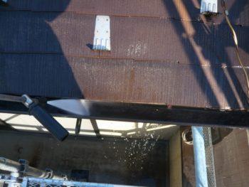 屋根からの汚れた水と一緒に雨樋の汚れも流していきます。