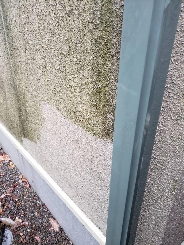 外壁を高圧線所ぅで洗っていきます。緑のコケはすっきりときれいになりました。